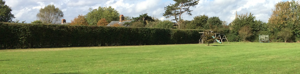 hedge cutting southbourne